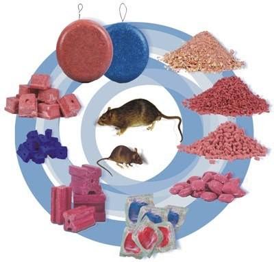 רעל עכברים  כפי שיכול להופיע בצורותיו השונות